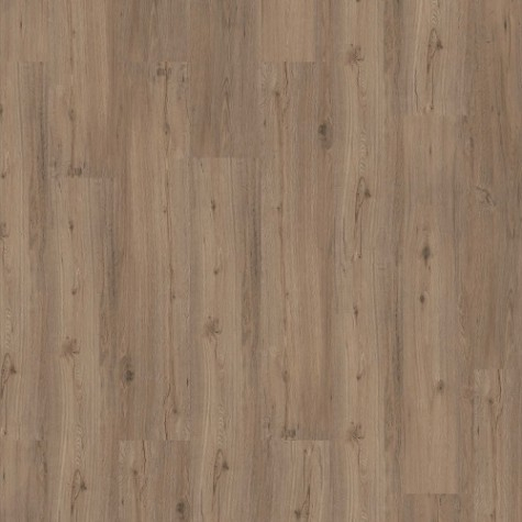 tarkett-essentials-30-soft-oak-light-grey-3977010